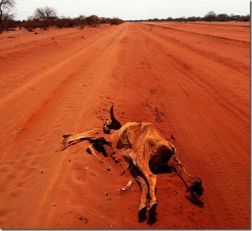 APTOPIX Kenya  Drought