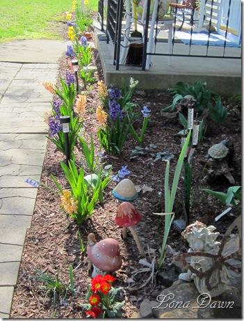 Hyacinths_FrontPorch