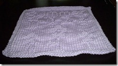 August Midmonth Dishcloth KAL