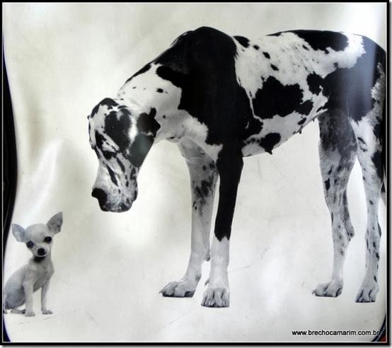 bolsa dogs brechocamarim-001