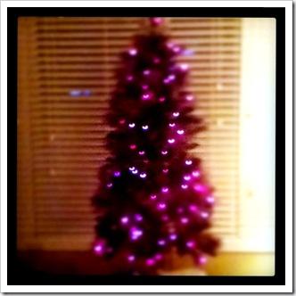 tree_bokah