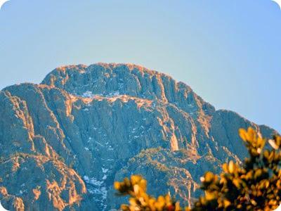 Mt. Wrightson