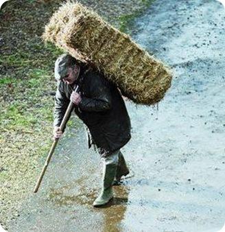 Pessoa carregando um fardo