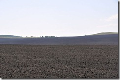 08-11 saratov 012 800X terre brune vers saratov