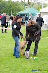 20100513-Bullmastiff-Clubmatch_30933.jpg