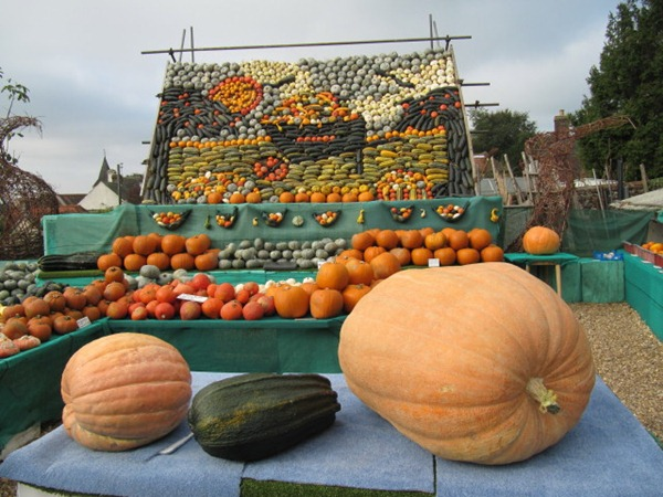 slindon west sussex pumking gourd squash display