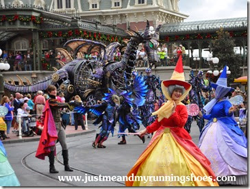Festival of Fantasy Parade (9)