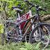 Руслан Мулюков - Свидание. Пока люди отдыхают, у их велосипеды наслаждаются покоем и обществом друг друга. Женственный розовый и брутальный черный.