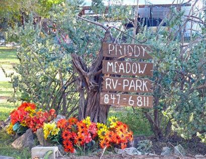 Priddy Meadow