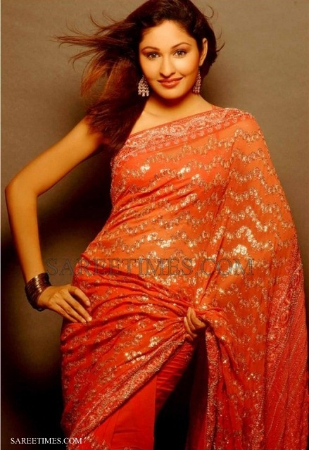 [Pooja_Chopra_Embroidery_Saree%255B4%255D.jpg]