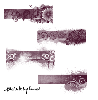 Starwalt top banner