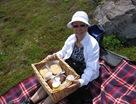 Ferryland Picnic