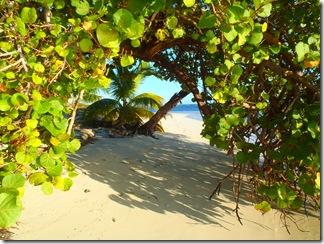 Nicolas Cay, Belize