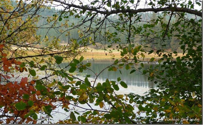 lake kelso 058