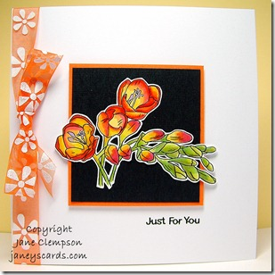 Freesia Card
