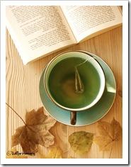 tea__books__autumn__by_katharinamarie