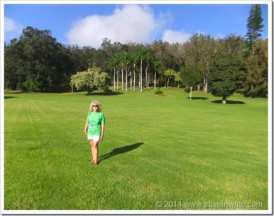 MauiLanaiSF2014 107
