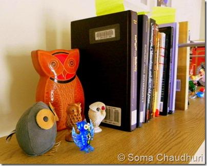 Owl4_Soma Ch