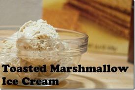 Toasted-Marshmallow-Ice-Cream-014nam[1]