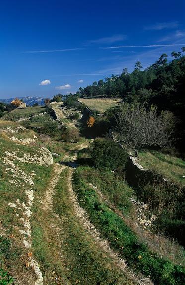 Camí del Portell de l'Infern (camí vell de la Sénia) a la sortida de Fredes, camí ramader, els Ports,  La Tinença de Benifassar, Castelló 2002.10