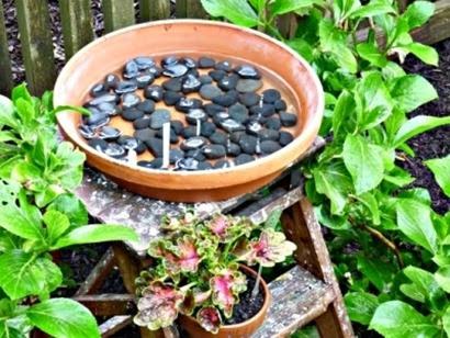 bird watering bowl