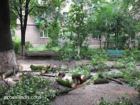 Ужгород 30-07-12 3.jpg