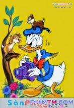 Bộ sưu tập Donald duck