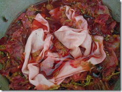 Fabric soaking pink bougan