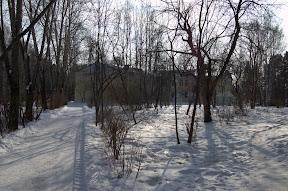 DSC 0167 Зима   общие виды