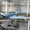 Douglas SBD-3 Dauntless at the National WWII Museum