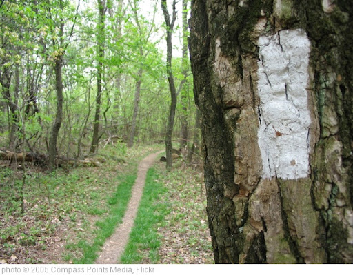 'Shenandoah Appalachian Trail' photo (c) 2005, Compass Points Media - license: http://creativecommons.org/licenses/by-nd/2.0/