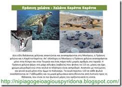 τα ζώα της Κύπρου(2)
