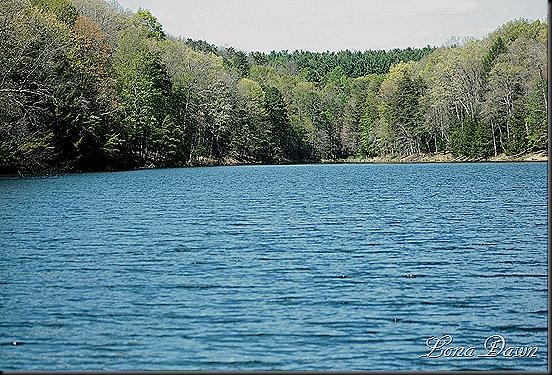 Rose_Lake2