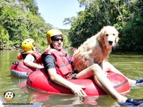 Pets Adventure 13 (137)