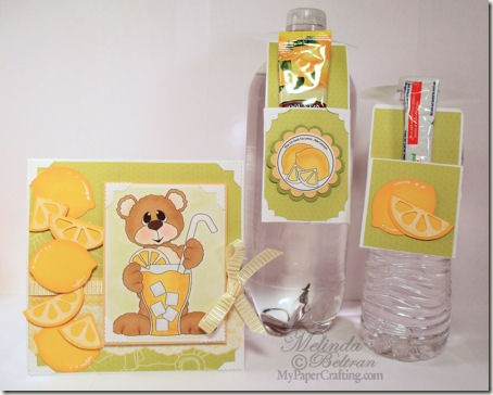 water bottle treat holder card set