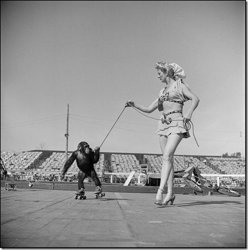 Stanley Kubrick _36