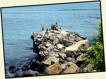 08h - Marginal Way - Rocky Coast