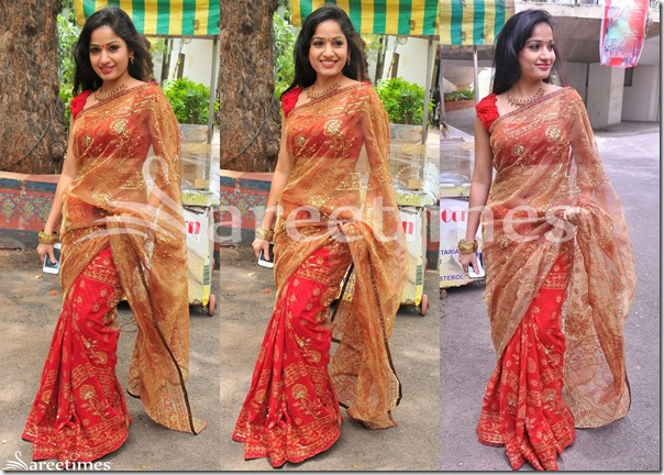 Madhavi_Latha_Half_and_Half_Saree
