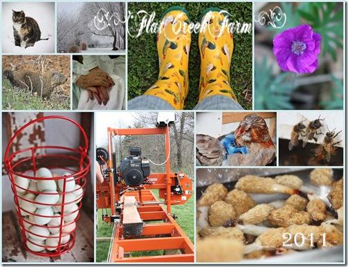 2011_collage1 copy