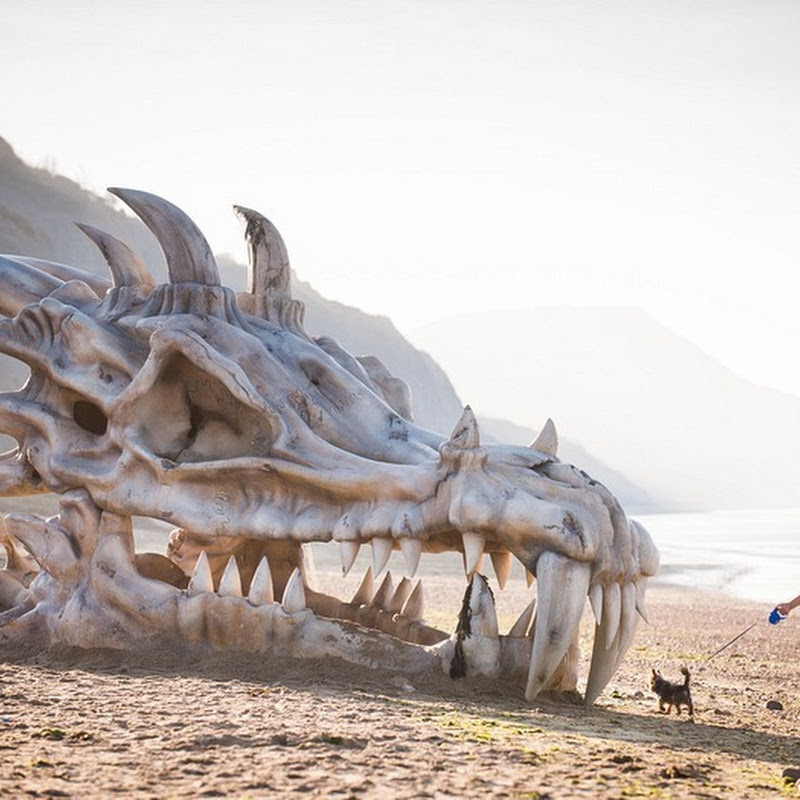 "Giant Dragon Skull on an English Beach Promotes ""Game of Thrones"""