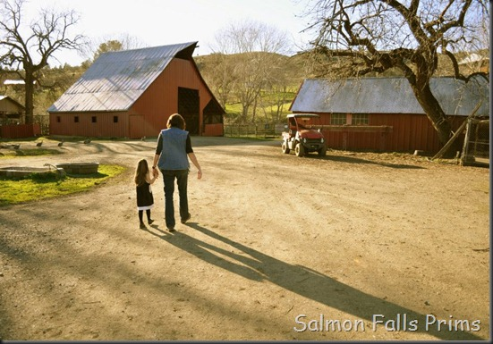 Sophia at ranch (2)