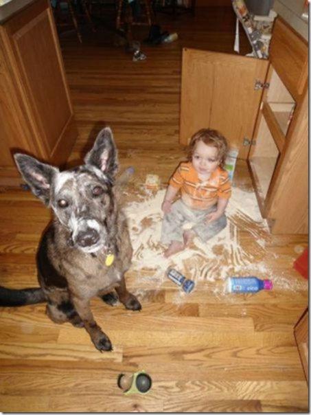 dogs-kids-best-friend-4