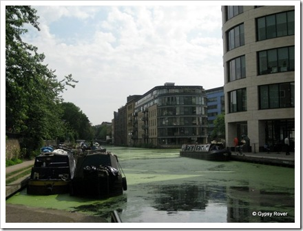 Duck weed covers the Regents Canal by Battlebridge Basin.