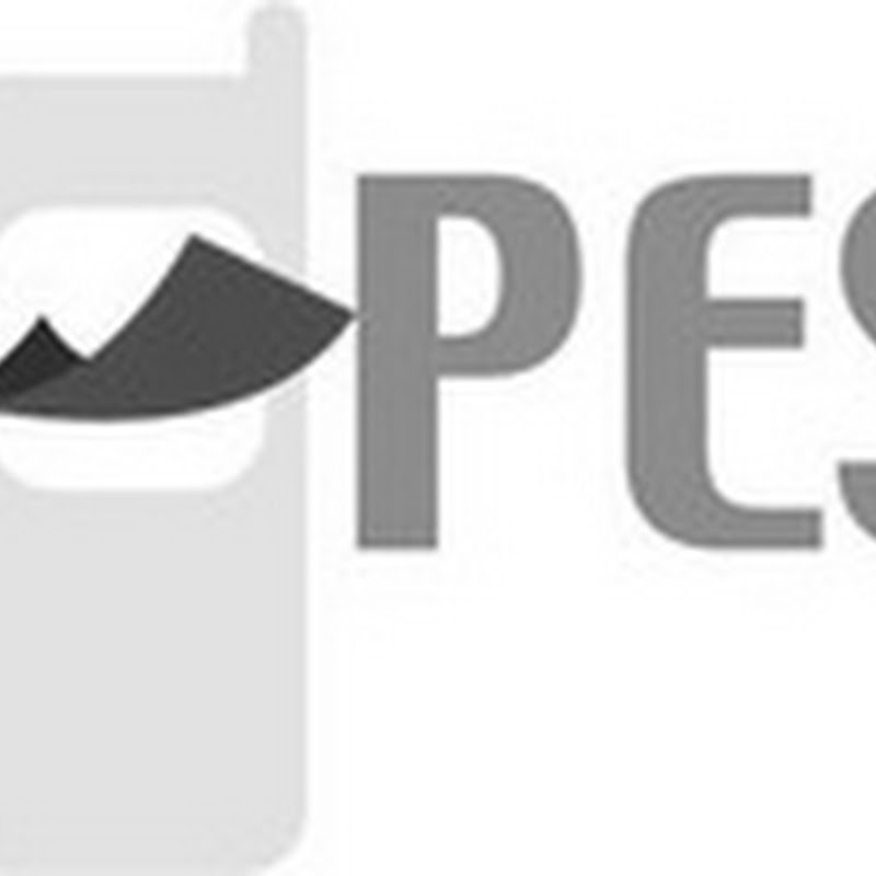 M-pesa's Open Source API by Mike Pedersen