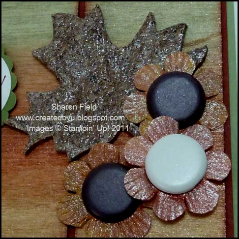 3.black_eyed_Susans_cork_Maple_Leaf