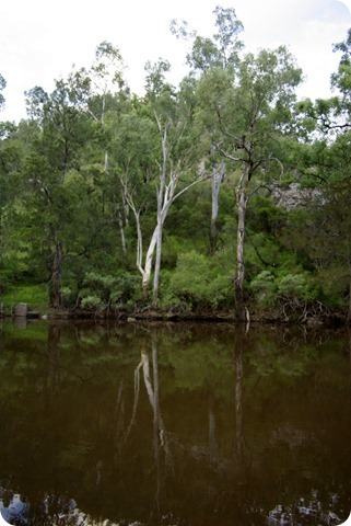 Gwydir River Campground - beautiful but dangerous