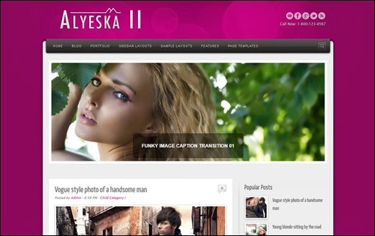 Alyeska II Blogger Teması