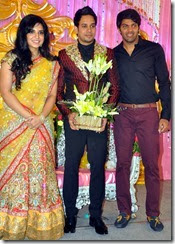 bharath_jeshly_marriage_reception_new_photo