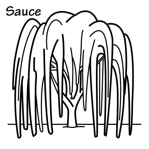 Dibujos Para Colorear De Buceo furthermore Sauce Dibujo Para Colorear additionally 3 further Dibujos Para Colorear De Beyblade as well Hoteltransylvania2. on juegos de pintar