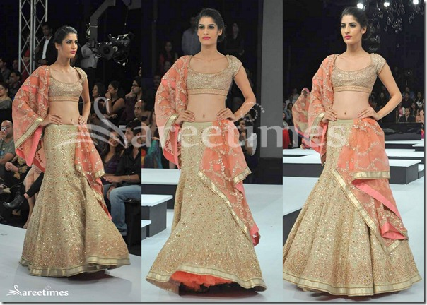 Shantanu_Nikhil_Lehenga_Collection